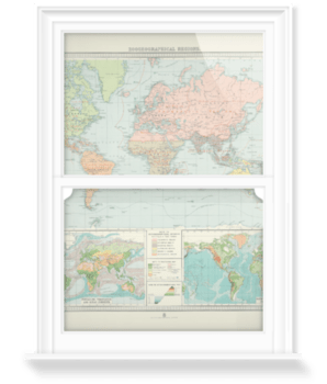 'Zoogeographical Regions' Decorative Window Film