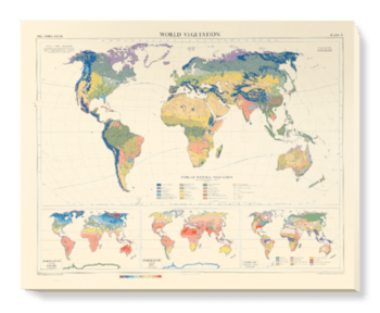 'World Vegetation' Canvas Wall Art