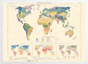 'World Vegetation' Art Prints