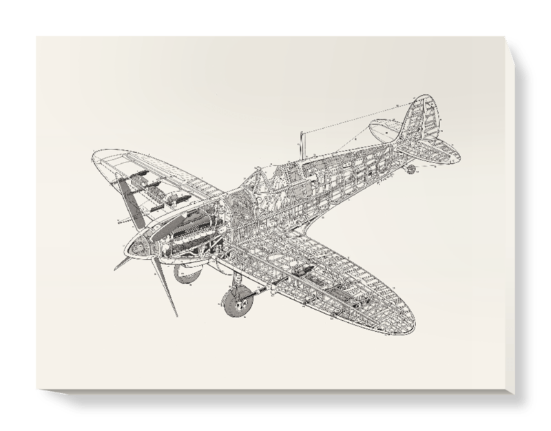 'White Spitfire' Canvas Wall Art