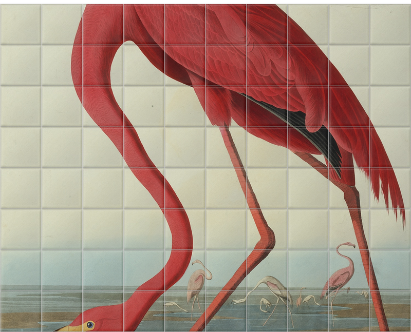 'Greater Flamingo, Phownicopterus Ruber' Ceramic Tile Mural