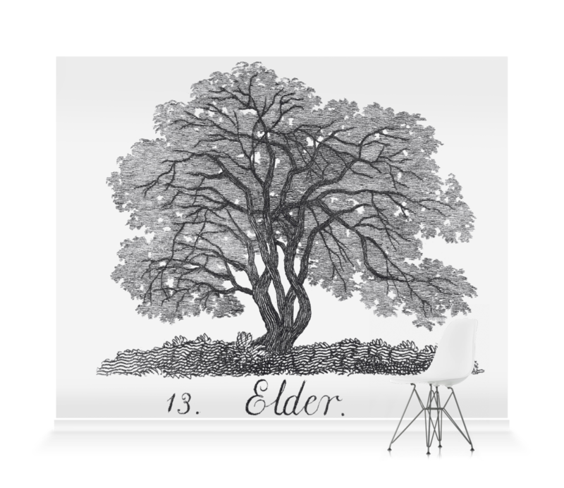 'Elder' Wallpaper Mural
