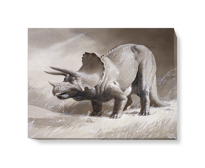 'Triceratops' Canvas wall art