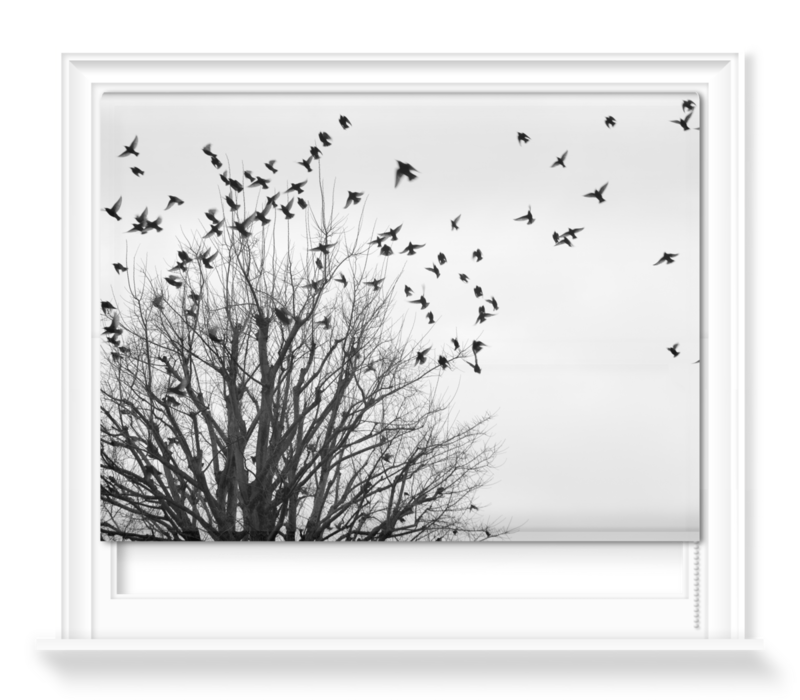 'Birds in Flight II' Roller Blind