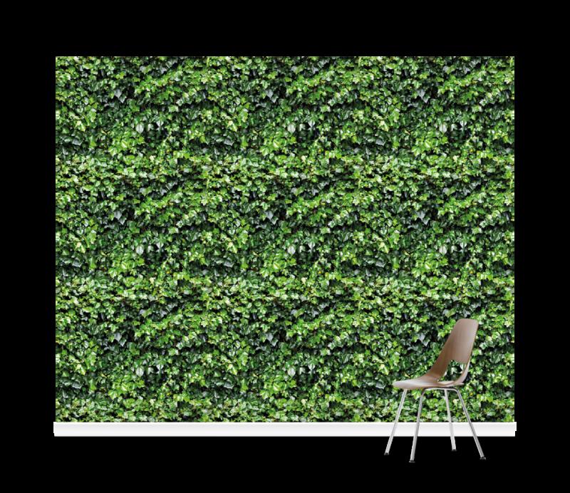 Ivy Wall Garden Green Wallpaper Mural Surfaceview