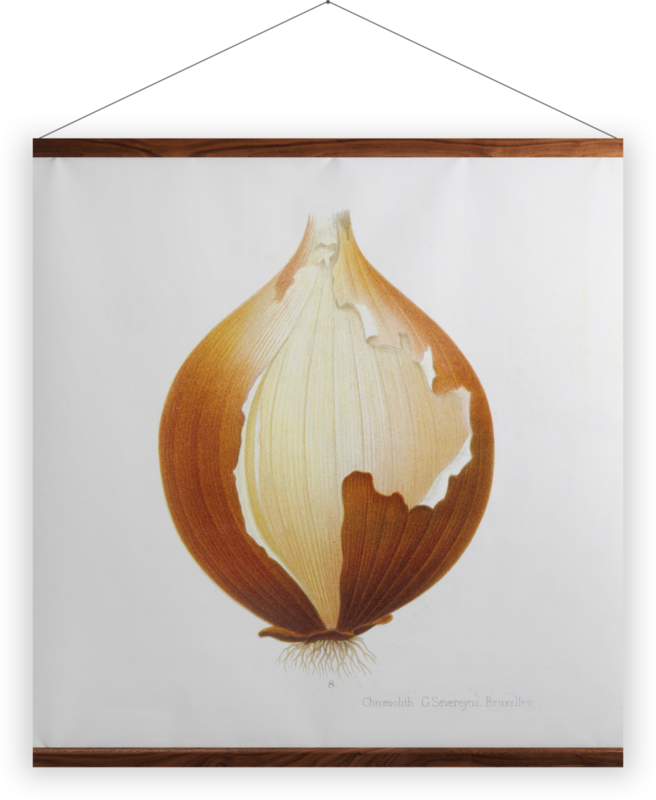 'Onion' Wall Hanging