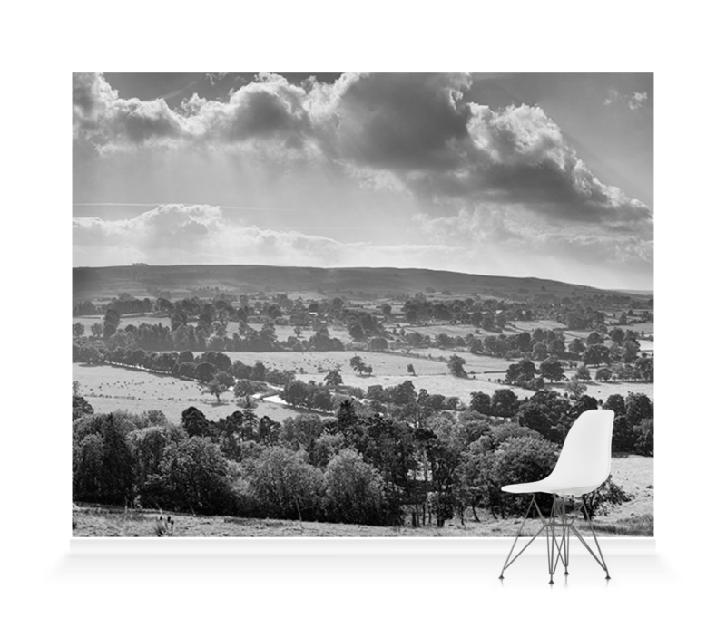 Teesdale I Bw Wallpaper Mural Surfaceview