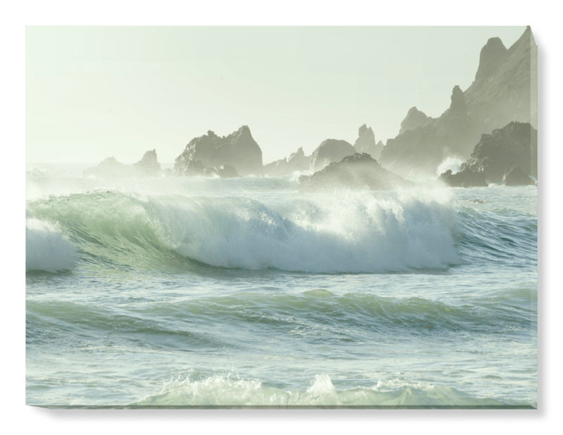 'Coastal Rush' Canvas Wall Art