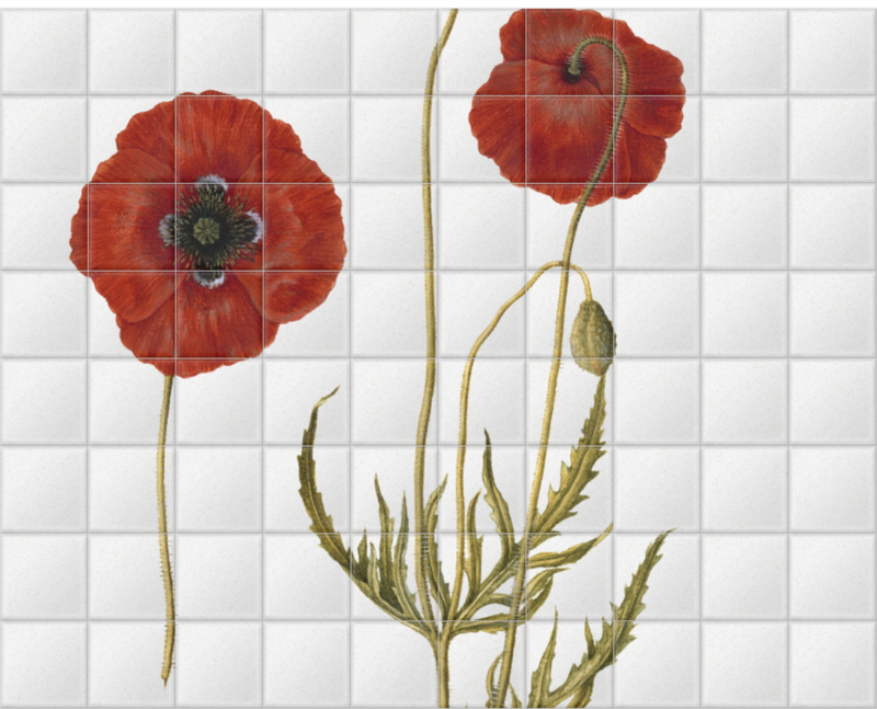 'Corn Poppy' Ceramic Tile Mural