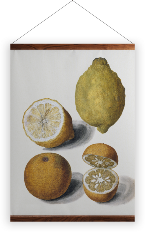 'Orange and Lemons' Wall Hanging